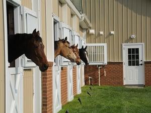 marlboro ridge equestrian center